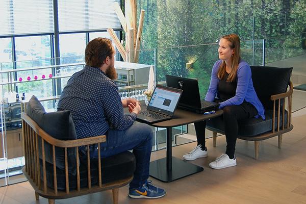 Online marketing consultants